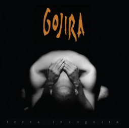 GOJIRA - TERRA INCOGNITA LTD. - 2LP